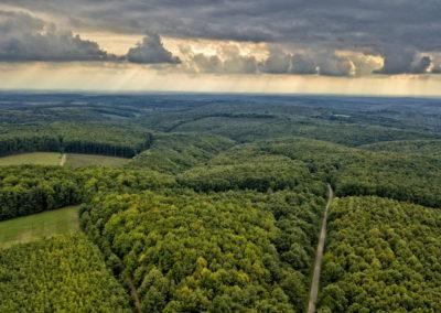 Zselici erdő, drónfotó