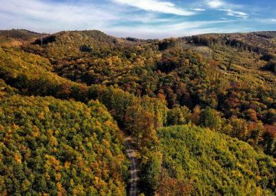 Mecsek Melegmányi-völgy drónfotó