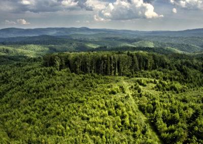 A Ravna gora gerince, szemben a Papuk nyugati fele