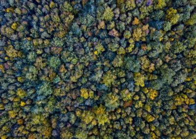 Mecsek ősz drónfotó