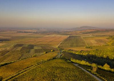 Villányi ősz, drónfotó