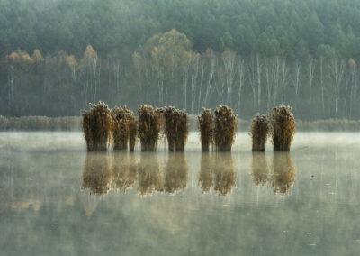 Herman Ottó-tó, Mecsek