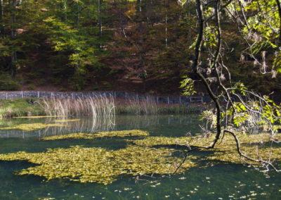 Jankovac, alsó tó
