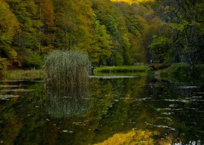 Jankovac-i ősz