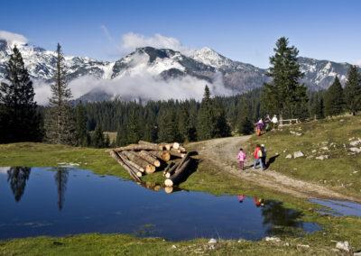 Velika planina az Ojstrica csúcsával a háttérben