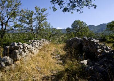 A Sveto brdo felé vezető út kezdete