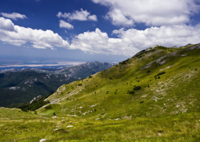A világoszöld hegyoldal peremén vezetett fel az út