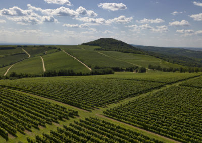Villányi szőlőültetvények felett, Villányi-hegység, Fekete-hegy