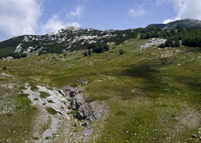 Szemben a Stirovac csúcs, a törpefenyők között valahol ott a Marasovac forrás, National park Paklenica, Velebit, Croatia