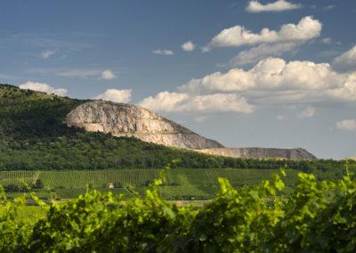 A nagyharsányi kőbánya, Villányi-hegység, Szársomlyó