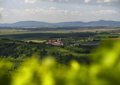 Palkonya napfürdőzik, a háttérben a Mecsek és a lábánál Pécs, Villányi-hegység
