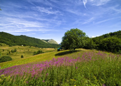 Donje Bare, Zelengora, Sutjeska National Park, Bosznia-Hercegovina