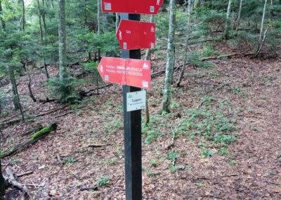 Tunjemir, balra az őserdő, jobbra Prijevor, Maglic, Sutjeska National Park, Bosznia-Hercegovina