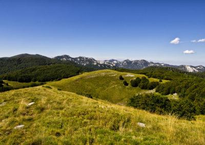 A füves mezőn alig látni jeleket, a bal oldalon lévő erdőfolt felé kell lemenni a hegyről, Sjeverni Velebit National Park