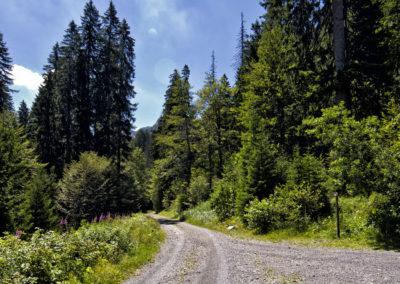 Elértük a parkolóhoz vezető utat, Sjeverni Velebit National Park