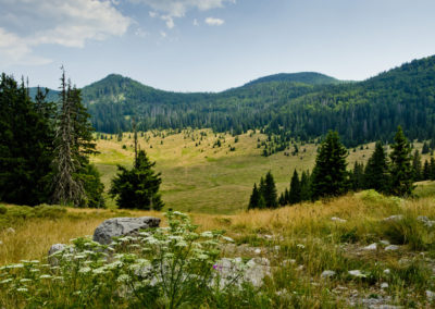 Pillantás a Veliki Lubenovac mezőre, Sjeverni Velebit National Park