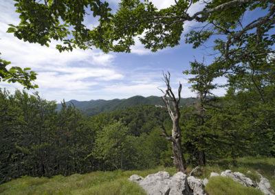 Pihenőhely kilátással az út elején, Sjeverni Velebit National Park