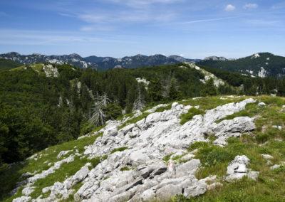 Sziklák között vezet az út a Goljak felé, Sjeverni Velebit National Park
