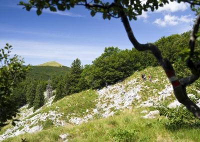 Kanyarog az út a gerincen a Goljak-csúcs felé, Sjeverni Velebit National Park