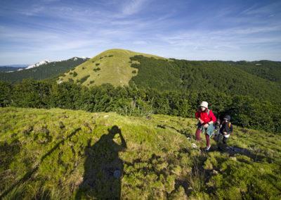 Pillantás a Goljakra a Veliki Golić-ról, Sjeverni Velebit National Park