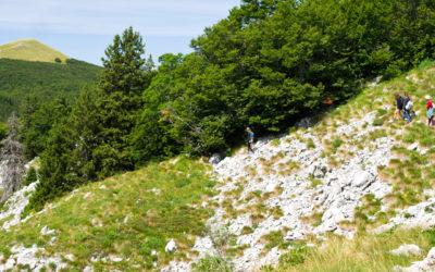 Négy csúcs túra az Északi-Velebit Nemzeti Parkban