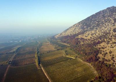 Kopár-dülő a Szársomlyó tövében, Villányi-hegység, drónfotó