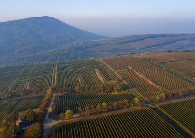 Lágy vonalak, Villányi-hegység, Szársomlyó, drónfotó