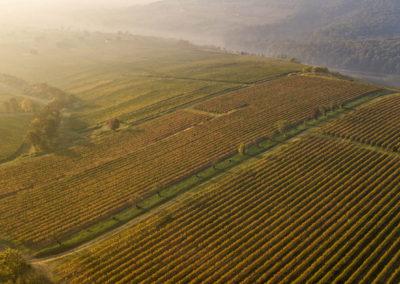 Majdnem Toszkána, Villányi-hegység, Ördögárok, drónfotó