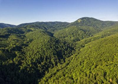 Jól kivehető a Papuk nyugati meredek gerince a kis mezővel az oldalán