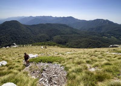 Meredek út vezet a Ljubičko brdo-ra, de a kilátás csodás