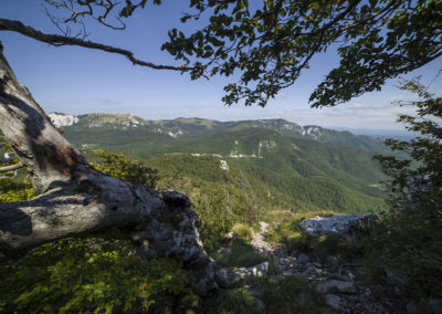 Szemközt a hegybe mart Knežić-Kekićeva-hágóút vonala