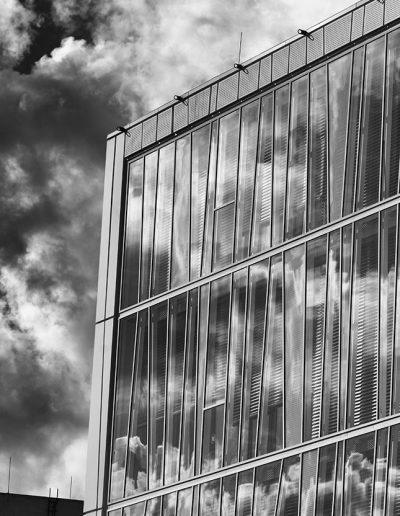 Felhők, vonalak, felületek - PTE Szentágothai János Kutatóközpont, 2020