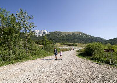Az első kilométerek még ilyen murvás utón vezetnek a Ljubičko brdo felé