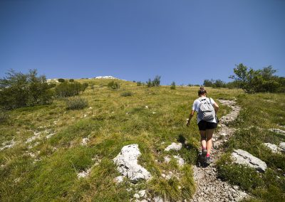 Irány a Ljubičko brdo
